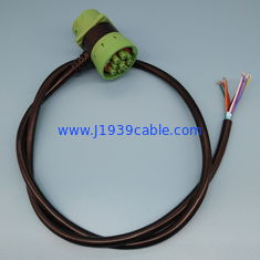 Cina RoHS Deutsch 9 Pin J1939 Cable Pass Through To Open End Cable pemasok